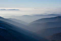 Carpathian beauty Stock Images