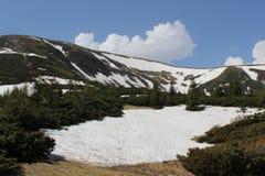 Carpathian berg i snön Arkivfoto
