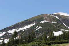 Carpathian berg i snön Royaltyfria Bilder