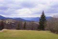 Carpathian berg på fjädern Arkivfoton