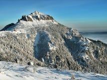 carpathian berg romania Arkivfoto