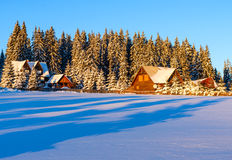 Carpathian berg, Rumänien Arkivfoto