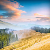 Carpathian berg valley_3 Arkivbild