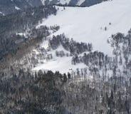 Carpathian bergkoja Royaltyfri Fotografi