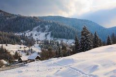 carpathian bergvinter Royaltyfri Bild