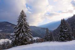 carpathian bergvinter Arkivfoto