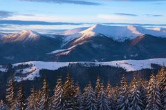 carpathian bergvinter Royaltyfria Bilder
