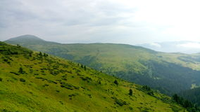 Carpathian Chornohora Stock Image