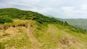 Carpathian Chornohora Royalty Free Stock Photography
