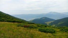 Carpathian Chornohora Royalty Free Stock Photos