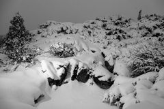 Carpathian cliffs covered in snow at evening Royalty Free Stock Image