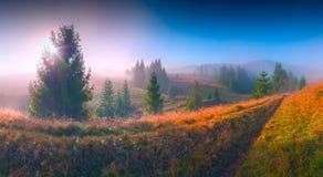 Carpathian dream Royalty Free Stock Photography