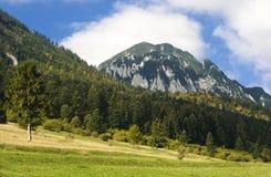 carpathian dzień jesieni Fotografia Stock