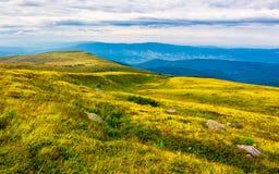 Carpathian fjällängar med enorma stenblock på backar royaltyfria bilder