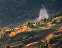 Carpathian fog Royalty Free Stock Image