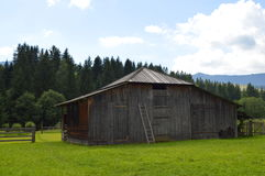 Carpathian gammal ladugård för boskap Royaltyfria Foton
