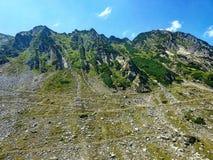 Carpathian grönt berg Fotografering för Bildbyråer