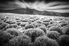 Carpathian hills. Monochrome colors Stock Photos