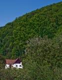 carpathian kabin Royaltyfri Bild