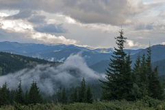 Carpathian landscape. In bad weather stock photos