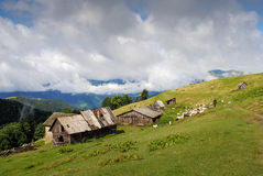 Carpathian landscape. Barns on the slopes sheep and shepherd Stock Image