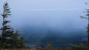 Carpathian landscape at evening stock footage