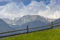 Carpathian landscape with with meadow Stock Images