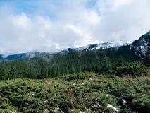 Carpathian landscape - mountain Goverla Stock Photography
