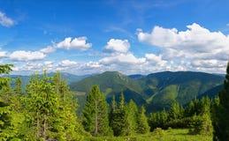 Carpathian landscape Royalty Free Stock Photo