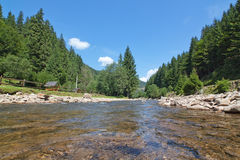 Carpathian landscape of the river up close. Royalty Free Stock Images