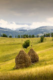 Carpathian landscape Royalty Free Stock Image