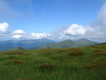 Carpathian landscape. In summer sunny day Royalty Free Stock Image