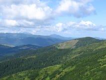 Carpathian landscape. In summer sunny day, Ukraine Stock Image