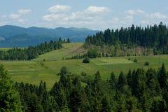 Carpathian landskap Fotografering för Bildbyråer