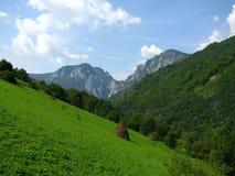 Carpathian meadow. A summer landscape in the Carpathian Mountains (Trascau mountain), Romania Stock Photos
