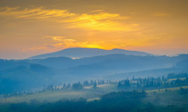 Carpathian meadows Royalty Free Stock Images
