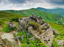 Carpathian montains view Royalty Free Stock Images