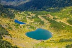 Carpathian mountain lake Stock Image