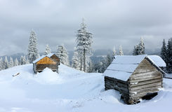 Carpathian mountain landscape in winter. Royalty Free Stock Photography