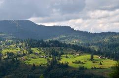 Carpathian mountain. Live, village, Carpathian, landscape, view, house, sunlight, tree Stock Images
