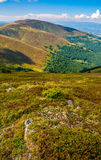 Carpathian Mountain Range in late summer Royalty Free Stock Photography