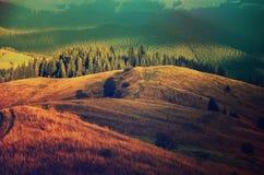 Carpathian mountain sunny landscape Stock Photography