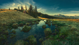 Carpathian mountain valley vintage. Panorama of Carpathian mountain valley in light of rising sun, what shining through the trees. Vintage colors Stock Images