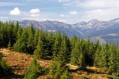 Carpathian mountain view. Tulisa on autumn Stock Photo
