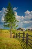 Carpathian mountain village meadow Royalty Free Stock Photography