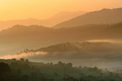 Carpathian mountains. Was shoted early summer morning in Bukovel village Royalty Free Stock Photo