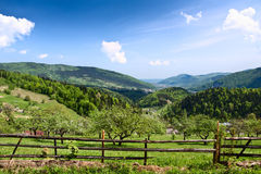 Carpathian Mountains. Royalty Free Stock Photography