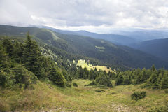 Carpathian mountains Stock Photography
