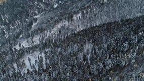 Carpathian mountains 4K aerial video footage from drone in Romania. Carpathian mountains aerial footage from drone in Romania in winter time 4 k stock footage