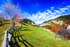Carpathian Mountains, Autumn landscape in Magura stock photo